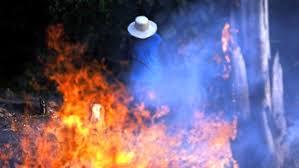 Resultado de imagen de la voz de la Amazonia