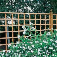 Buy Fencing Direct Garden Trellis Is A Garden Design Essential Shop Our Full Range Now Milled