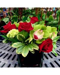mother s day flowers delivery naples fl