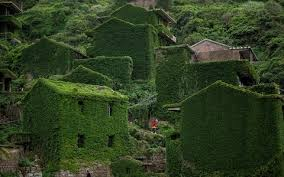 the abandoned chinese fishing village that was reclaimed by nature