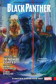 Black Panther Hardcover Vol 1 A Nation Under Our Feet