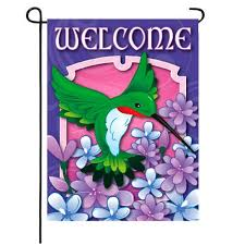 welcome hummingbird spring and summer