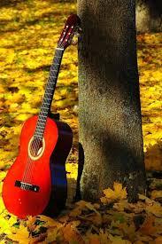 maple guitar mobile wallpaper guitar