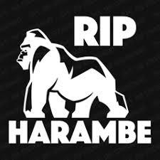 Rip Harambe Vinyl Decal The Stickermart