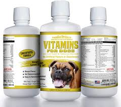 Amazon.com : 100% Natural Dog Vitamins and Supplements - Liquid  Multivitamin for Dogs - Senior Dog Vitamins - Vitamins for Dogs with  Probiotics - Usa Made Vitamin for Dogs - Pet Vitamins