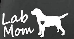 Amazon Com Dream Walkers Lab Mom Labrador Dog Breed Car Vinyl Decal Sticker Vinyl Die Cut Decal Bumper Sticker For Windows Cars Trucks Laptops White 7 5 Inches Automotive