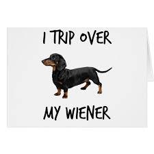 trip over my wiener funny dachshund dog