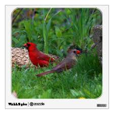 Male Cardinal Wall Decals Stickers Zazzle