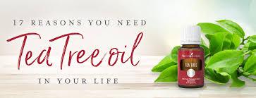 17 reasons you need tea tree oil in