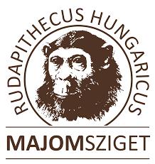 Resultado de imagen de Rudapithecus