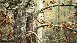 realtree camo wallpapers for walls