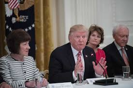 Susan Collins Will Miss Trump Visit To Maine Amid Protests : NPR