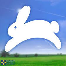 Leaping Bunny Vinyl Decal Seward Street Studios