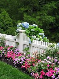 Pin By Shannon Paprocky On Gardening Beautiful Gardens Cottage Garden Front Yard Landscaping