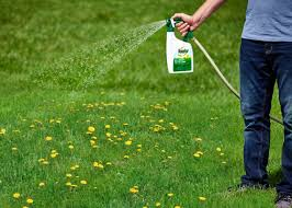 kill weeds without killing your lawn