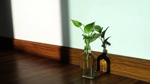 a letter to maa the money plant