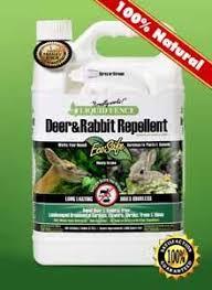Liquid Fence Deer Rabbit Repellent 1 Gallon Ready To Use Rabbit Repellent Deer Repellant Repellent