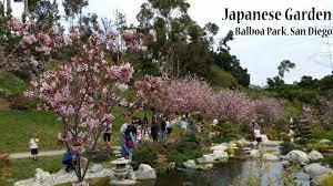 anese garden balboa park san