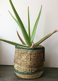 plant pot cork feet risers flower
