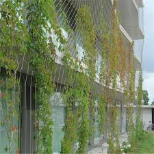 Steel Wire Rope Climbing Plant Images Dsa Fence Green Facade Green Architecture Green Wall