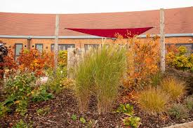 greenfingers nest rest garden opens