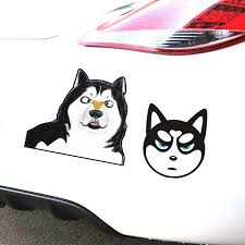 Funny Pet Dogs Sticker Car Window Decal Cute Pet Puppy Car Sticker 20 30cm Car Styling Accessories Car Stickers Aliexpress