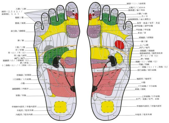 「father josef reflexology」の画像検索結果""