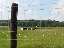 Agricultural Georgetown Fence Company