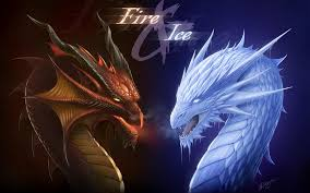 1748 dragon hd wallpapers background