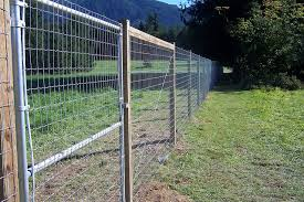 Rabbit Fencing Wire Fence Fencing Treated Pine Induced Info