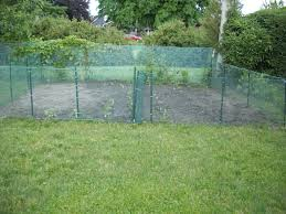 Garden Fencing Ideas Homsgarden