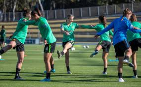 Nevin relishing the chance to learn from Westfield Matildas best |  MyFootball