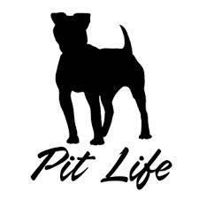 Pit Life