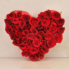 order flowers india send