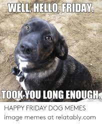 happy friday dog memes image