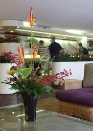 AVENIDA DEL RIO BARRANQUILLA MIRADOR  Venta Flor Heliconia Ginger Eventos programados Barranquilla