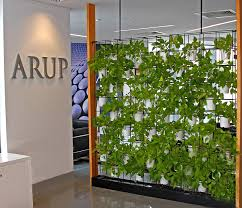 green wall for your office why