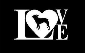 Love Boston Terrier Dog Vinyl Decal Stickers Sticker Flare Llc