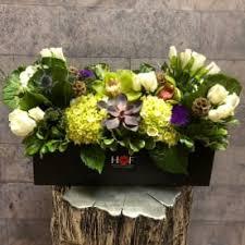 send cymbidium orchid fort worth tx