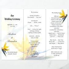 bird of paradise fold free folded progr