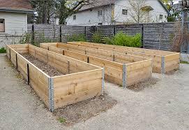 raised beds making the kitchen garden