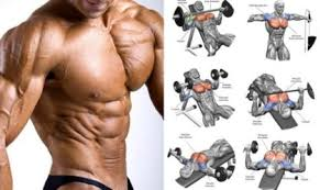 upper chest workout and their benefits