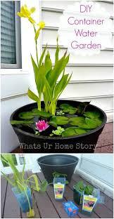 mini water garden ideas