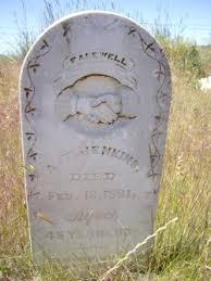 "A. T. ""Addie"" Jenkins (1844-1891) - Find A Grave Memorial"