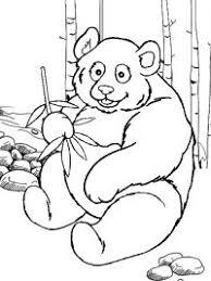 Pandabeer Kleurplaten Topkleurplaat Nl