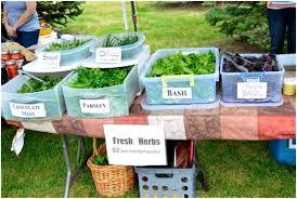 kids start a gardening business