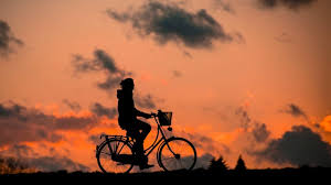 the importance of bicycle maintenance for a safe ride