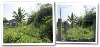 Fenced Residential Lot For Sale Code Rl 1077 Candon City Ilocos Sur Philippines