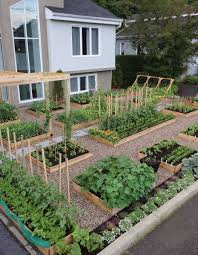 front yard vegetable garden seattle