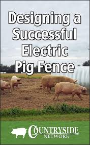 Tools For A Successful Electric Pig Fence Countryside
